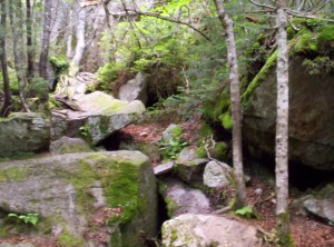 The start of Mahoosuc Notch, which is basically a scramble among rocks ranging from car-sized to house-sized with little actual ground in sight