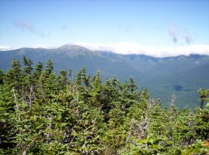 Another view from near one of the peaks of Carter Mountain