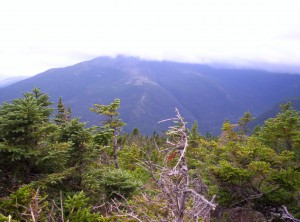A view toward cloud-obscured Mount Washington from just near treeline on Mount Madison