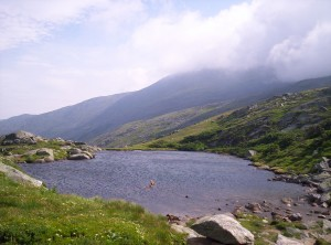 One of the namesakes for Lakes of the Clouds Hut - a pond with ripples from constant wind