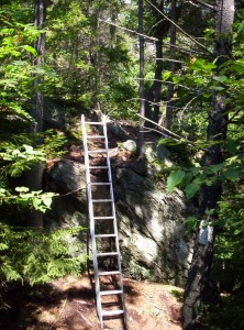 A ladder to get up and over a particularly steep section of trail