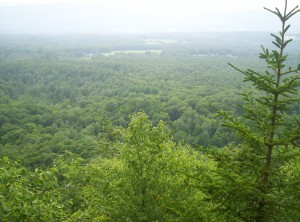 The view from an overlook just south of Clarendon Gorge