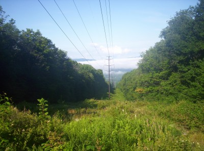 A morning view through a clear-cut section of forest so that power lines could pass through