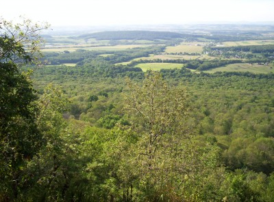 A panoramic view just south of 501 Shelter, overlooking trees and farmlands