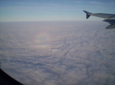 Glory and tip of plane wing