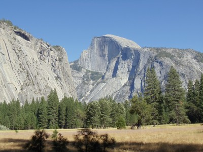 Half Dome, seen from Ahwahnee Meadow