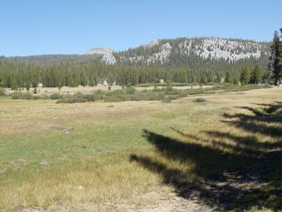 Tuolumne Meadow, surrounded by low-lying hills and mountains