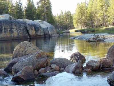 Looking north along the gentle Lyell Fork past various boulders submerged in it