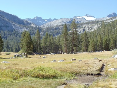A grassy meadow near the southern end of Lyell Canyon, just before the ascent to Donahue Pass starts