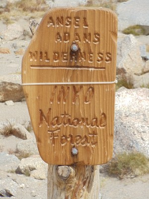 A wooden sign marking the entry to Ansel Adams Wilderness and Inyo National Forest