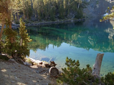 Reflections and color against the shallows of Ruby Lake; fallen trees and the occasional small rock are clearly visible against the soil floor